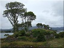V6644 : Castles of Munster: Dunboy, Cork by Mike Searle