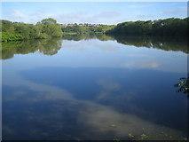 TQ2187 : Brent Reservoir by Nigel Cox