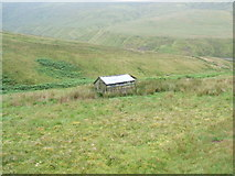 NY6248 : Old hut by David Brown