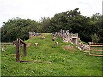J0558 : Goat house at The Animal Farm at Tannaghmore Gardens by P Flannagan