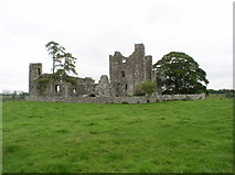 N8559 : Bective Abbey by JP