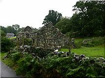 SH7519 : Old Ruin by liz dawson