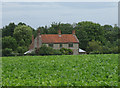 TG1734 : Old House (rear) on edge of Aldborough by Zorba the Geek
