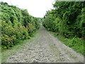 SP7600 : The Ridgeway Path by Peter Jemmett