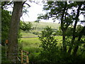 SD7088 : View of the hillside at North Lord's Land by Phil Catterall