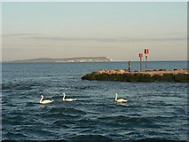 SZ1891 : Mudeford: looking across to the tip of the Spit by Chris Downer