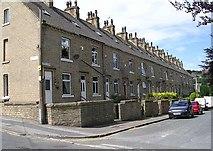 SE1537 : Dockfield Terrace by Betty Longbottom