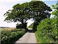 NZ7615 : Moor Lane by Stephen McCulloch