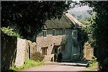 ST5707 : Idyllic cottage in Melbury Osmond by Chris Downer
