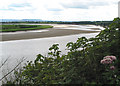 SO6911 : View across the bend in the River Severn by Pauline E