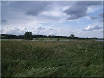 SK8805 : The View NW from the Waderscrape Bird Hide at Rutland Water by Nigel Stickells