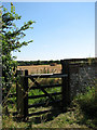 TG2236 : View towards Osier Carr from churchyard gate by Evelyn Simak