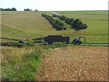 SU0248 : Farmland, Tilshead by Andrew Smith