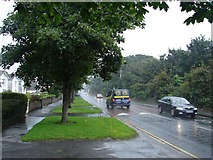 O2443 : Strand Road in the rain by Ian Paterson