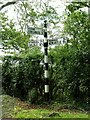 NY4970 : Cumberland signpost near Roweltown by Rose and Trev Clough
