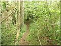 SJ2622 : Offa's Dyke Footpath on Blodwel Rock by John Haynes