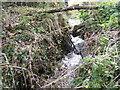 TL7798 : A Norfolk waterfall by Jonathan Billinger