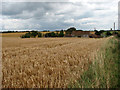 TG2436 : View across field to Pit Farm by Evelyn Simak