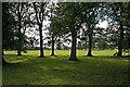 NZ0461 : Parkland by Helen Wilkinson