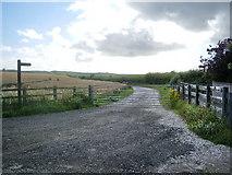 NY0638 : Bridleway to Bankend by Alexander P Kapp