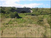 NO5101 : Railway Bridge by Sandy Gemmill
