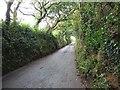 SX2968 : Lane through Woolston by Rob Farrow