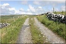 M1404 : The Burren Way by Mark Duncan