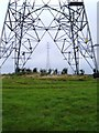 TF6022 : Pylons over River Great Ouse by Martin Pearman