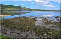 HY3613 : Beach and mudflats at Finstown Centre waterfront, Mainland Orkney by C Michael Hogan