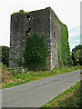 W4244 : Castles of Munster: Ballinoroher, Co. Cork (2) by Mike Searle