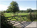 TF9524 : Gateley gates! by David Williams