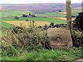 SE0037 : Oldfield village stone by David Spencer