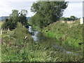 SJ3827 : Drain outlet into River Perry by John Haynes