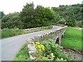 O1919 : Glencullen Bridge by JP
