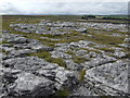NY6311 : Limestone pavement on Orton Moor by Jonathan Billinger