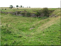 NY9569 : Disused quarry near Keepwick Fell by Mike Quinn