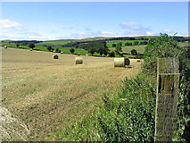 NU0011 : Harvest bales near Unthank Farm by Walter Baxter