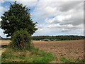 TG1134 : View across ploughed field to Heath Farm by Evelyn Simak