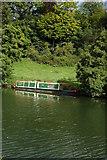 ST7066 : River Avon near Kelston Park by Philip Halling