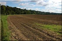 ST7066 : Meadows opposite Kelston Park by Philip Halling