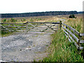 NY5279 : Gateway to a large cleared area of Kershope Forest by Oliver Dixon
