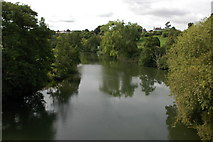 ST6867 : River Avon at Saltford by Philip Halling