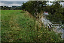 ST6768 : The River Avon downstream from Saltford by Philip Halling