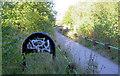 SE3706 : Trans Pennine Trail junction. by Steve  Fareham
