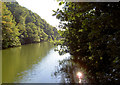 SE3906 : Man made lake 2. by Steve  Fareham