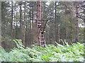 SE2266 : Deer shooting platform by Mick Borroff