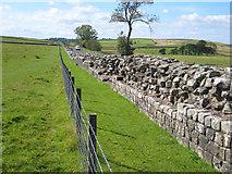 NY6166 : Hadrian's Wall at Birdoswald by Oliver Dixon