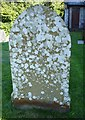 SJ2430 : Lichen covered gravestone by Penny Mayes