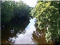 SJ1006 : View upstream, Afon Banwy by Maigheach-gheal