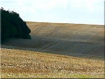 SU2886 : Field of stubble near Compton Beauchamp by Brian Robert Marshall